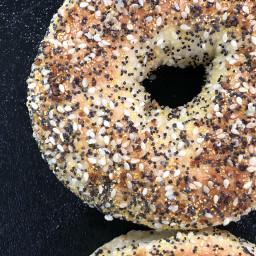freetoedit bagel bagels everything thisbageliseverything pcfoodphotography pcsomethinground pcbakery