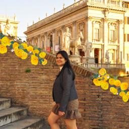 yellowflowerbrush rome italy lovelyplace springtime