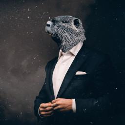 freetoedit businessman animal animalhybrid face