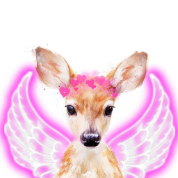 deerhead freetoedit