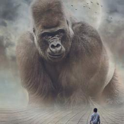 freetoedit editedbyme imagination surreal gorilla