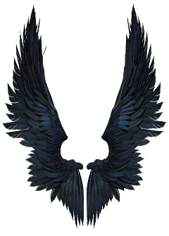 stickergang wings valkyrie bad looking