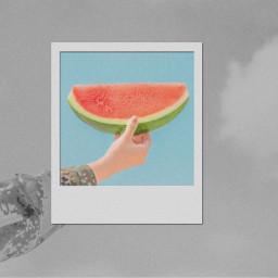 watermelon polaroid blackandwhite color colour freetoedit
