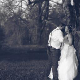 blackandwhite weddings weddingphotography woods nature