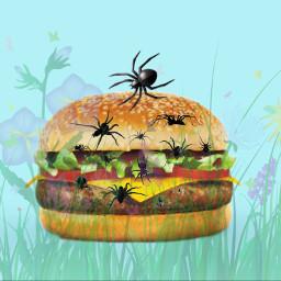 freetoedit spiders hamburger grassandflowers