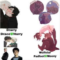 drarry wolfstar harrypotter paige