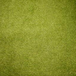 green grass background backgrounds freetoedit