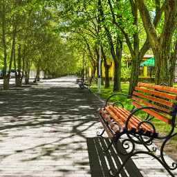cityscape alley tree bench perspective