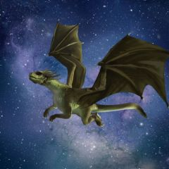 #catcurateddragon,#dragon