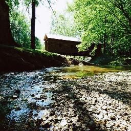 greenery alabama nature coveredbridge stream