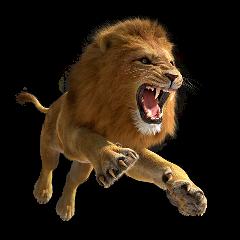 lion lionking desert animals king stickersfreetoedit freetoedit