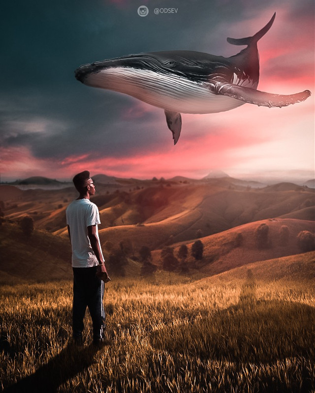 #freetoedit SURREAL WHALE #all2epic #theuniversalart #ig_shotz_magic #discoveredit #digitallyart #manipulationclan #creativeoptic #edits_of_our_world #visualsmovement #pr0ject_uno #creativegrammer #enter_imagination #createandcapture #igcreative_editz #edit_grams #edit_perfection #all_superrealism #moodytoning #edits_greatshots #ethereal_moods #awesome_surreal #amomentofwonder #thevisualones #creartmood #igtones
