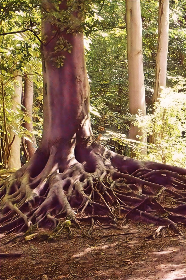 #forest #tree #trees #rosegoldmagiceffect #lighten #nature #myoriginalphoto  #freetoedit