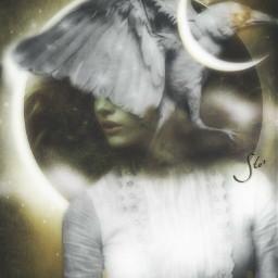 art moon fairy white raven