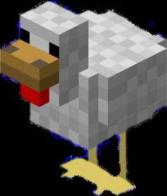 minecraft chicken freetoedit