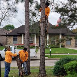 men workers treetrimer logs yellow freetoedit pcworkinghard