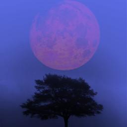 moon aesthetic purple
