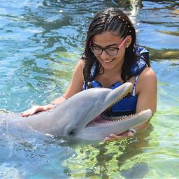 dolphins mexico smile smiles smileyface pcsmile