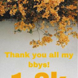 1200 myfollowers thankyousomuch mybbys
