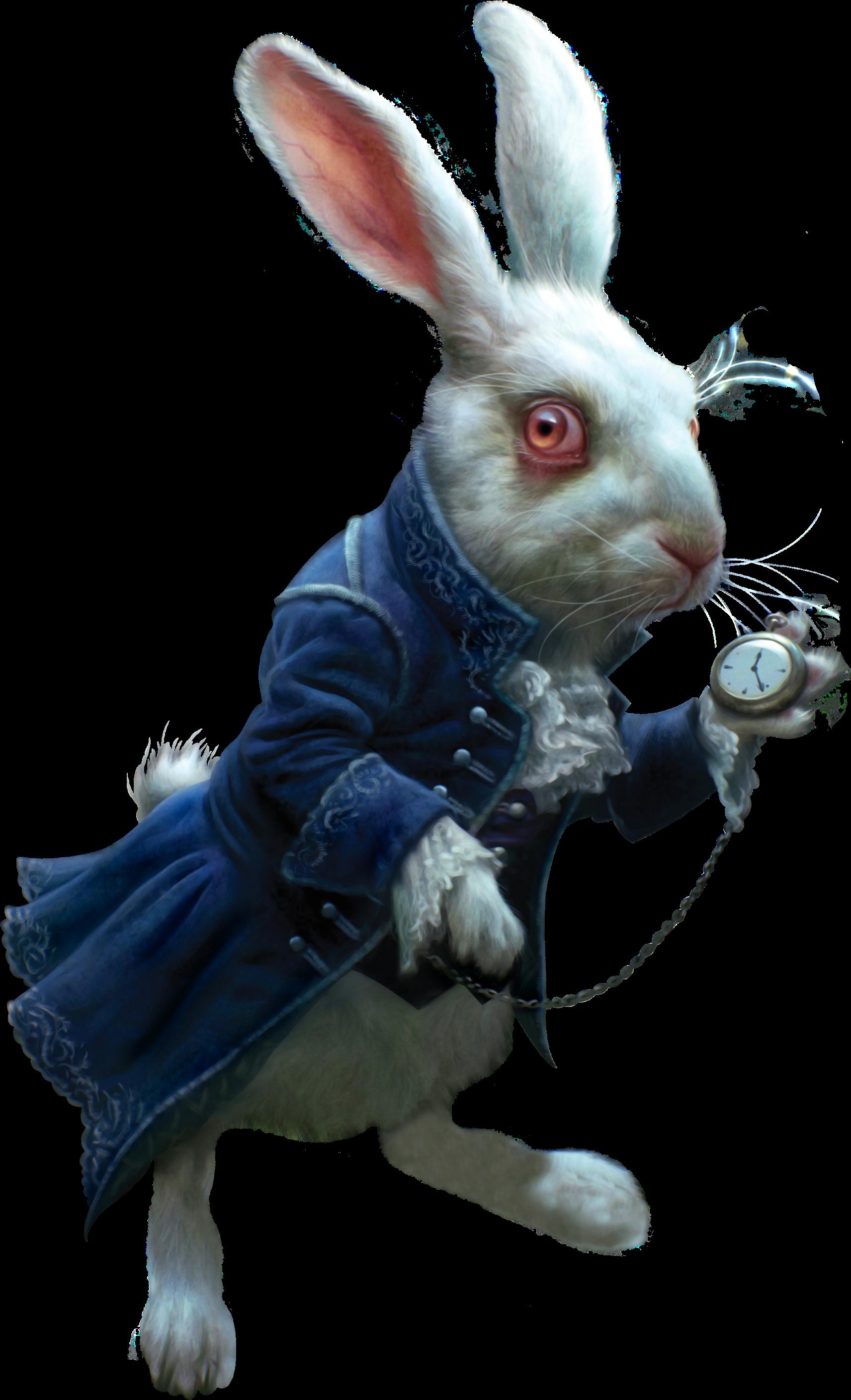 Белый кролик картинки алиса, своими руками