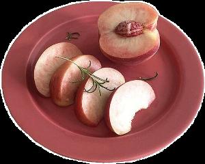 pinkaesthetic peach plate aesthetic freetoedit