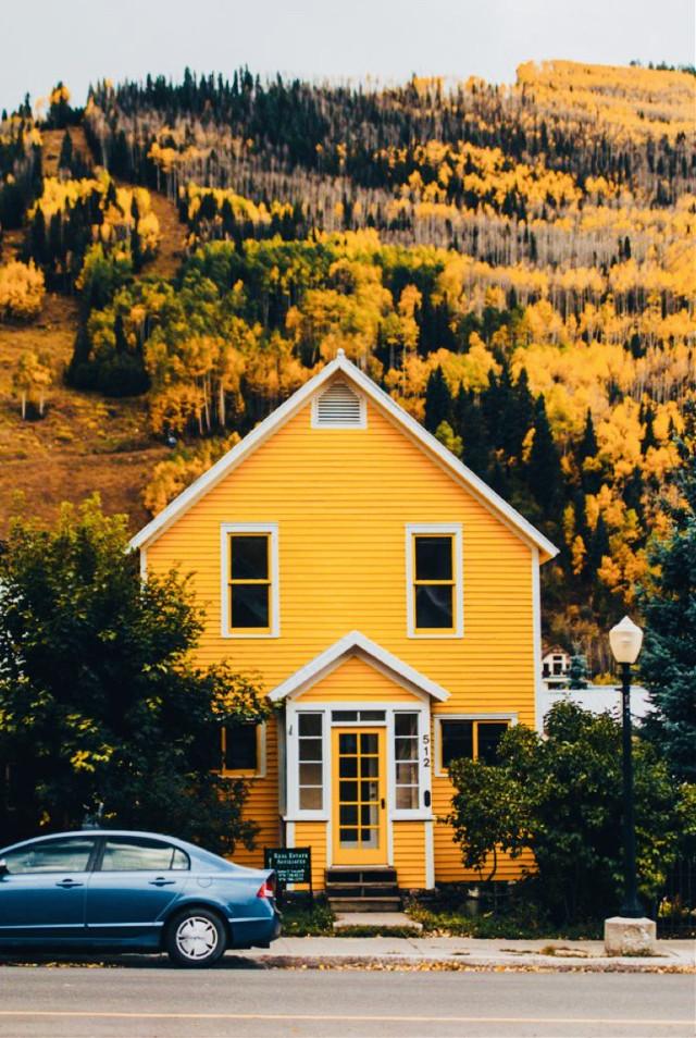 #freetoedit #cool #kewl #aestheticallypleasing #ilovethispic #yellow #fall #cute