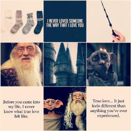dobledore dobby dumbledore dobbythehouseelf albusdumbledore freetoedit