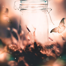freetoedit background bottle magic butterfly