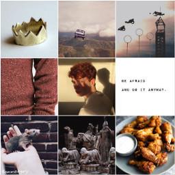 freetoedit ronweasley ron harrypotter orange red boy food king people edit picsart collage aesthetic weasley magic