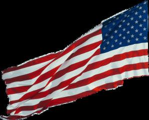 american freetoedit