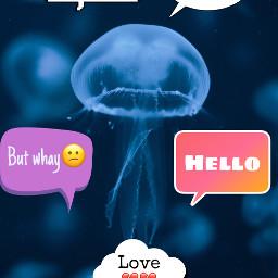 ircjellyfish jellyfish freetoedit