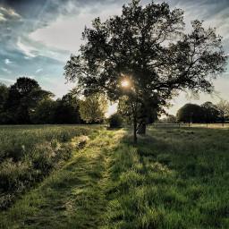 sunset nature stillness mood iphoneography