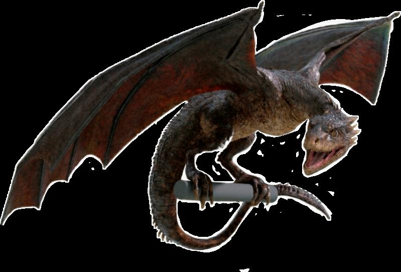 drogon dragon gameofthrones got