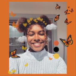 orange butterflies edit fall aestetics freetoedit