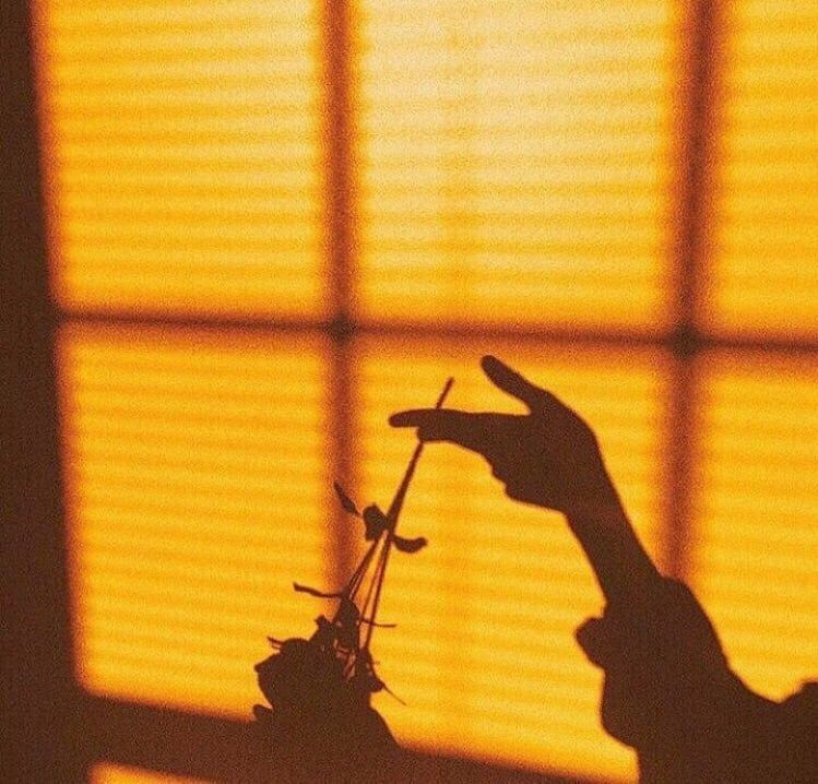 freetoedit yellow aesthetic aesthetictumblr vintage ros