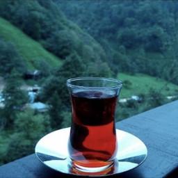 trabzonspor çayurrizespor çay karadeniz rize