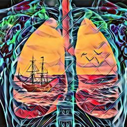 freetoedit lungs saltwater saltlife ocean