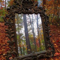 freetoedit mirrorreflections forestgreen