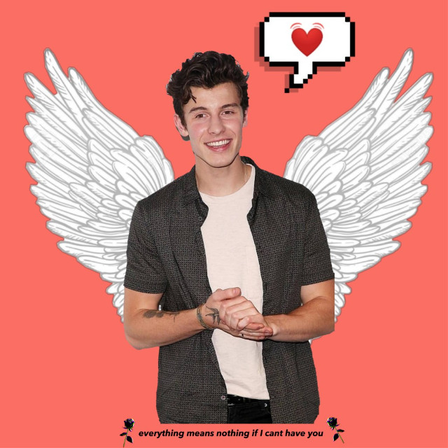 #freetoedit #shawn #mendes #shawnmendes #mendesarmy #wings #red