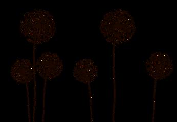 dandelions freetoedit