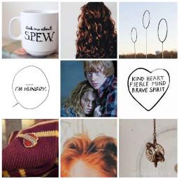 hermione granger hermionegranger hermionejeangranger hermioneweasley freetoedit
