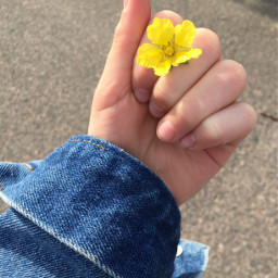 yellowflower jeansjacket hand sweden freetoedit