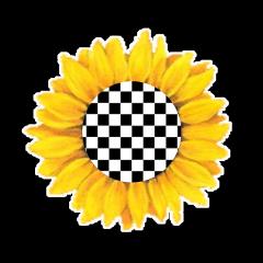 vans sunflower checkers checkeredsunflower freetoedit