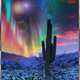 freetoeditbutgivemecredit desertsnow cactus snow auroraborealis freetoedit