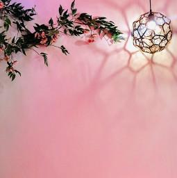 freetoedit remixit pinkwall lamp shadow
