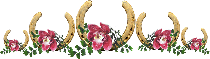 lucky horseshoe luck flowers horseshoes freetoedit