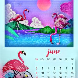 freetoedit flamingos calendar june blueandpink ircjunecalendar