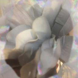freetoedit aestheticflower