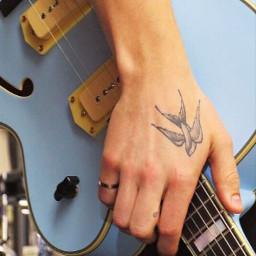 shawnmendes mendesarmyforlife mylove tattoo swallow freetoedit