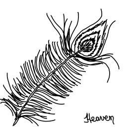 feather pluma myart art digitalart dcoutline